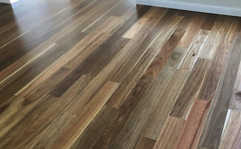 Spotted Gum by Beautiful Floors Naturally